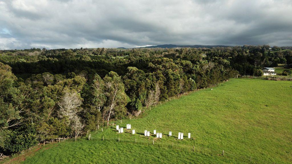 Honey Farm in Maui Hawaii